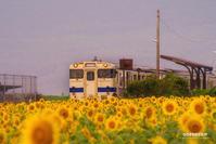 ☆ ひまわりの咲く駅 ☆ - Trimming