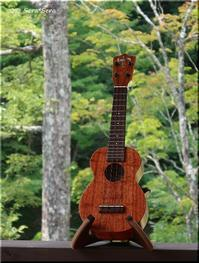 Aloha ukulele life ♪ - Que Sera *Sera