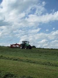 夏の終わり - ベルギーの田舎