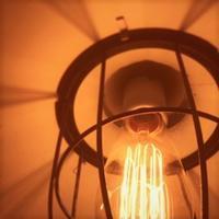 エジソンランプ~白熱E26 - 雑貨店PiPPi