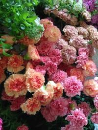 長く充実の3日間のはじまり - 花あるくらしをデザインする 花色空間Vertu