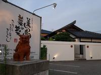 (金沢・保古町)美ら島の葉菜 - 松下ルミコと見る景色