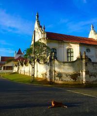 スリランカの旅~アマンガラに滞在❣️ - 八巻多鶴子が贈る 華麗なるジュエリー・デイズ