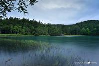 北国の夏はうたかた:5:古き湖の色 - walk with my Camera