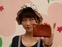 ミニウォレット! - 雑貨屋 anshare project の日記