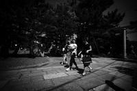 夏が往く #02 - Yoshi-A の写真の楽しみ