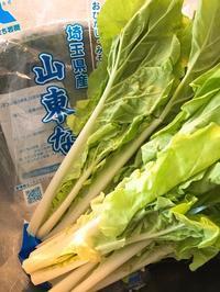 山東菜(さんとうな)のキムチ - 今日も食べようキムチっ子クラブ (料理研究家 結城奈佳の韓国料理教室)