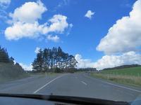 ロトマ湖ドライブ - いい旅・夢Kiwi スカイキウィの夢日記