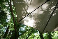 9月の森へ - aco* mode