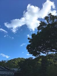 爽やかな一日 - g's style day by day ー京都嵐山から、季節を楽しむ日々をお届けしますー
