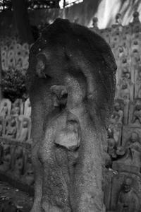 とろけ地蔵 「大円寺」 - ようこそ風の散歩へ