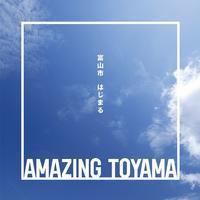 Amazing TOYAMA~びっくり、感動、私のふるさと~ - ~何でも揃う~本和堂雑多店(写真館)