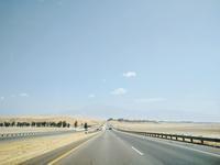 砂漠道中 - ラマがいない生活