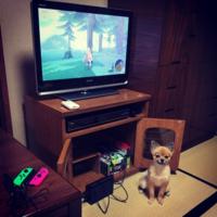 family☆switch - SORANKO