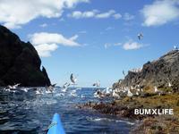 秋の海 - バムライフ BUMXLIFE