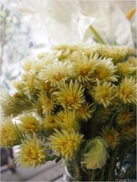 フラワールーシュお花の会☆9月レッスンのお知らせ - ルーシュの花仕事