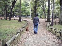 井の頭公園、そして神田川 - shoot !!