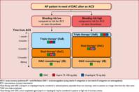 抗凝固薬+抗血小板薬併用療法の新しいガイドライン:2017ESC focused update - 心房細動な日々