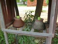 ミャンマーの美しき習慣 - イ課長ブログ
