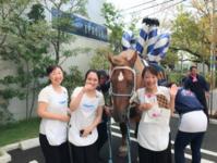 藤崎八幡宮秋の例大祭も間もなく、、 - aminoelのオーナーブログ(笑光輝)キラキラ☆