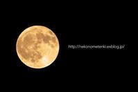 今宵満月 - ねこの目天気。