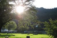 夕陽 - そ~ら、みてごらん