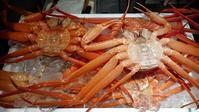 富山湾の秋の風物詩「紅ずわい蟹」 - ハチドリのブラジル・サンパウロ(時々日本)日記