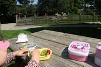 市民子供農場でのアップルタルト祭りに行って来ました☆ - ドイツより、素敵なものに囲まれて②
