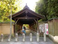 東福寺へ… - 黄色い電車に乗せて…