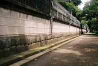 Snap No223 - 東京Shy 写歩く