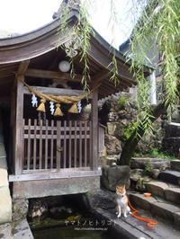 yamatoと宗祇水 - yamatoのひとりごと