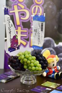 絶品!岡山県産ぶどうを食べ比べる:『岡山県産ぶどうメディアセミナー』 - IkukoDays