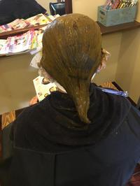 夏の紫外線にいためつけられた頭皮や髪の毛にも - 観音寺市 美容室 acchaの独り言