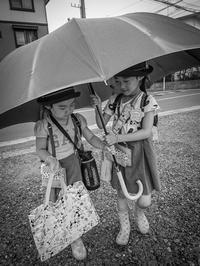 パパの傘 - くすりやさんの戯言