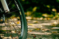 MTBで近所を徘徊する - 空のむこうに ~自転車徒然 ほんのりと~