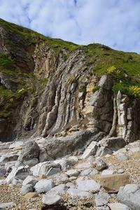 ジュラ紀の地層 - Millieの英国ドーセットLiFE