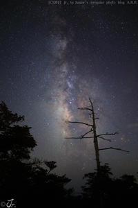 めぐりあい宇宙。 - Junior's irregular photo blog