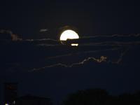 昨晩の月の出 - ひつじ雲