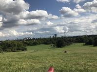 ロンドンの丘でピクニック - イギリスのロンドンで留学生活~ビザ・ワーホリ日常から学校情報~