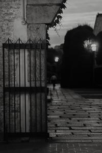 家路 - looking for Light