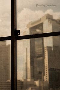 静かな窓から - Amo Amo Annex