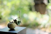 evam eva yamanashi 味・・・山梨県中央市・・・・ - Photographie de la couleur