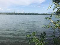 淀川実釣講習会の下見 - WaterLettuceのブログ
