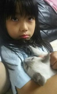 子猫の入浴 - MINKWIN Cattery &Pretty Aki