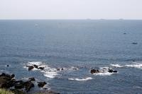 【県立 城ヶ島公園】 - うろ子とカメラ。