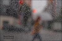 雨の交差点 - 和む由もがな