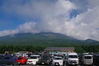 双子山(富士山) - 山の花、町の花