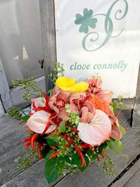 秋のオレンジ - clove-connolly staff blog