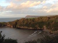 フィッシュアンドチップスの夕ごはん - イギリス ウェールズの自然なくらし