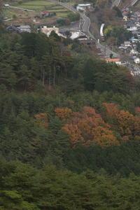 山 色づく - 2015年秋・わたらせ - - ねこの撮った汽車